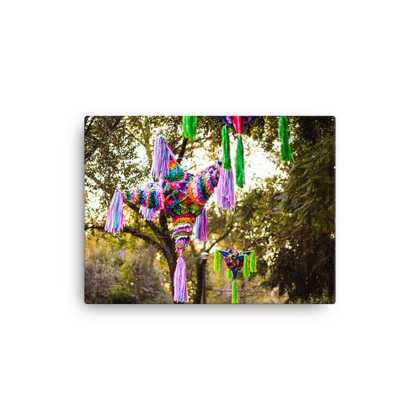 Canvas In 12x16 Wall 600f0c3155690.jpg